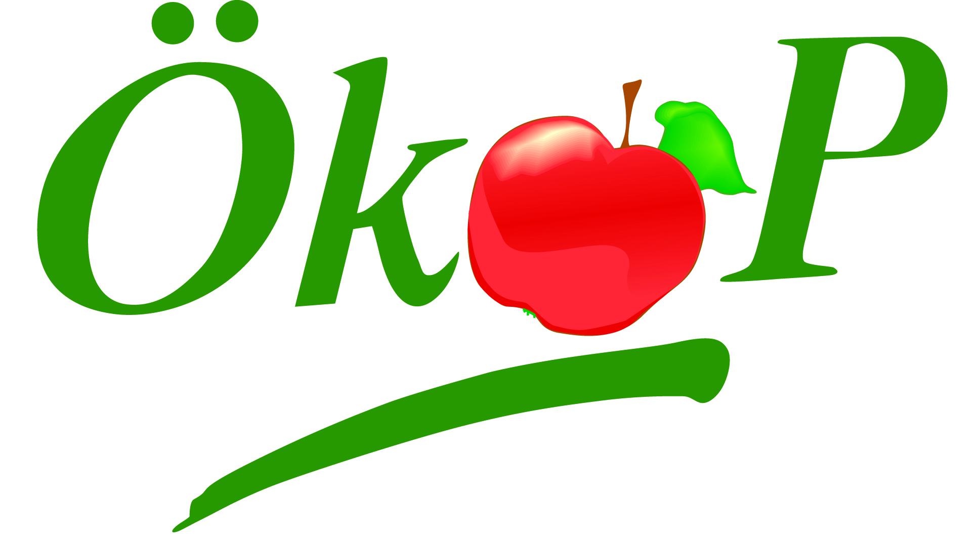 logo_rotcumVcx4gH9zd9
